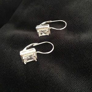 Silvertone Drop Earrings